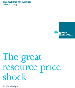 The great resource price shock (policy insight) cover