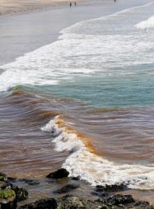 polluted sea Cornwall