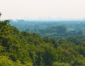 View from North London_crop