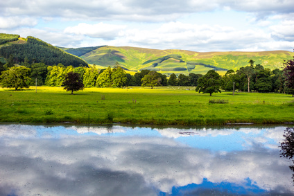 British landscape in Summer