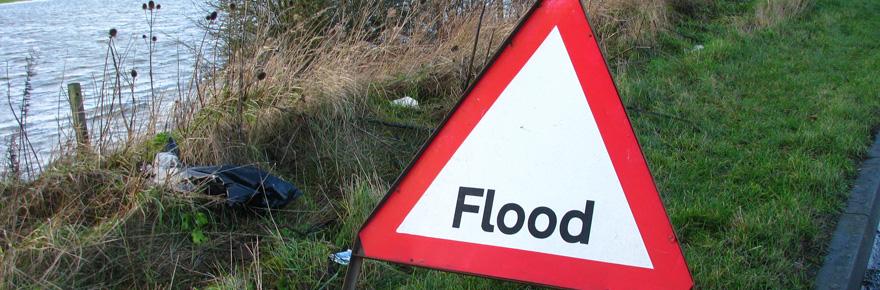 flood-crop
