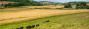 farming_uk_blog