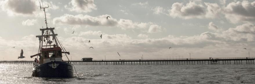 fisheries-blog