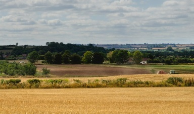 field agriculture farm crops england uk