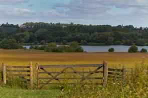 View of farm gate.