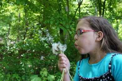 tree-nature-forest-grass-person-girl-1350598-pxhere.com