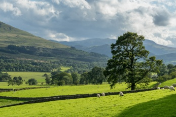 Countryside of the Lake District.jpg
