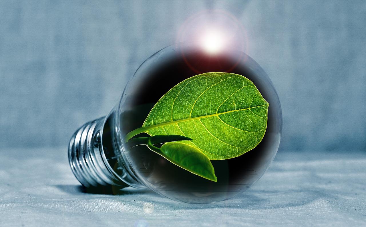 light-bulb-2631864_1280.jpg