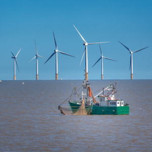 offshore wind small