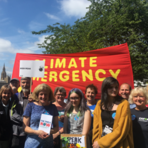 climate emergency small