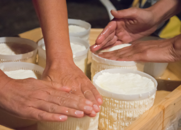 intext-cheese-blog