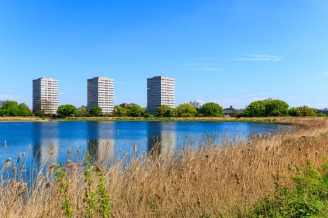 Woodberry Wetland in London