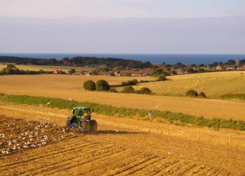 intext=-farming